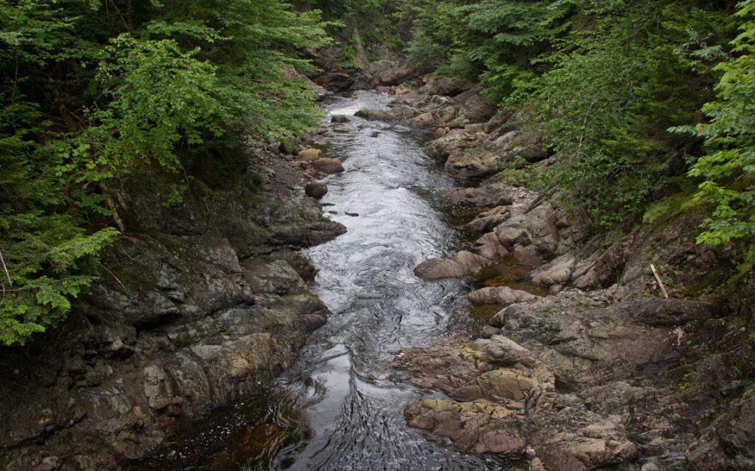 Picture of river between rocky banks.